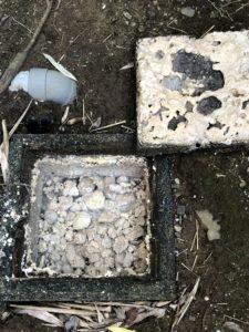 清掃前の排水マス