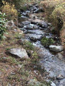 現場前の渓流