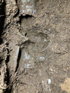 露出した排水管破損部